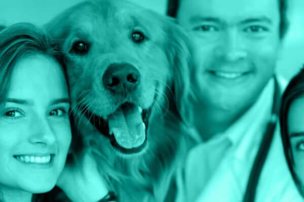 5 Essential Staff Development Tips for Veterinary Hospitals