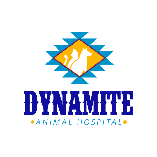 Dynamite Animal Hospital