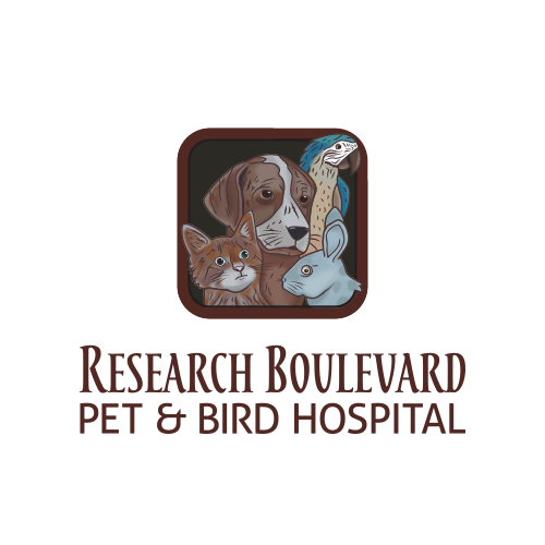Research Blvd. Pet & Bird Hospital