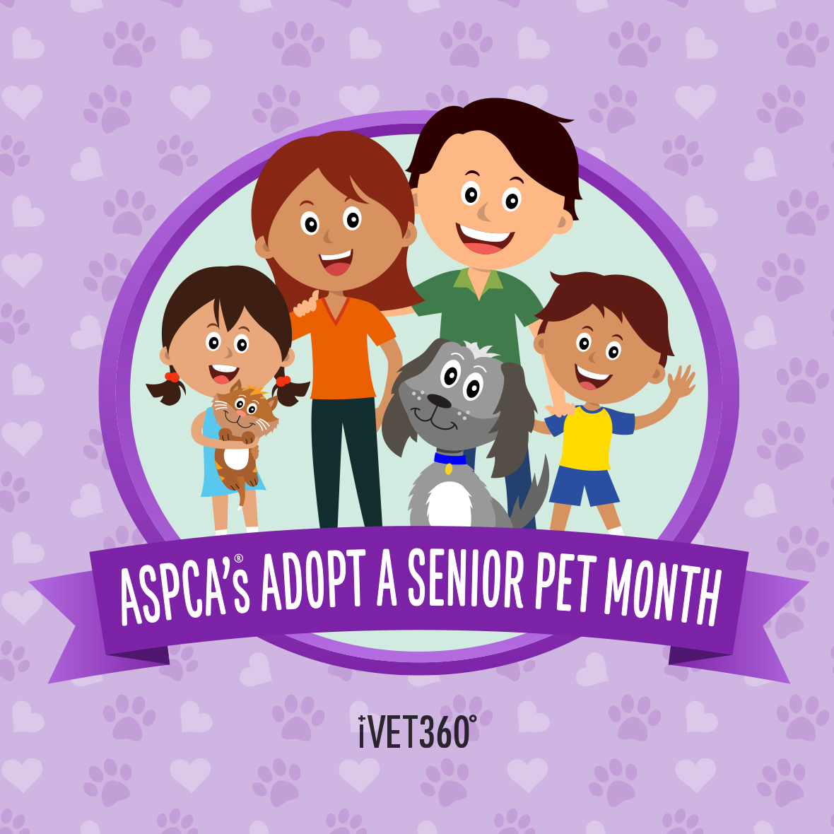 ASPCA's Adopt a Senior Pet Month