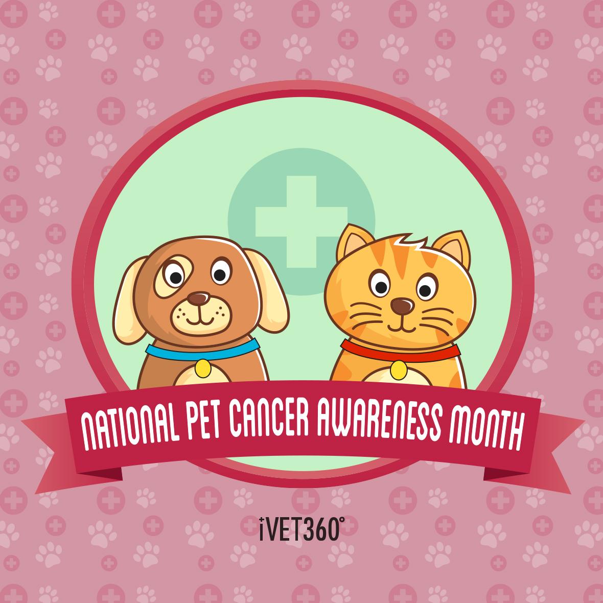 National Pet Cancer Awareness Month