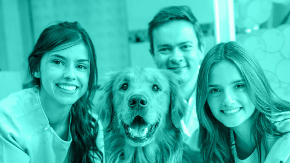 Improving Veterinary Employee Retention with Flexible Benefits