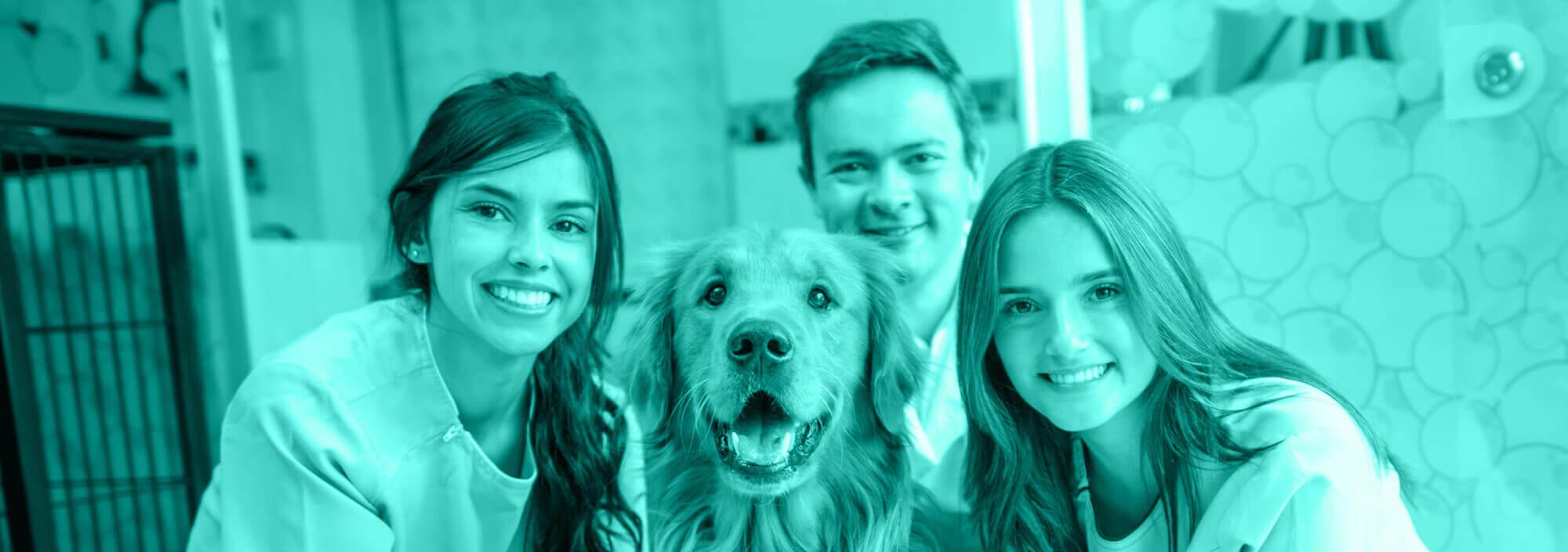Improving Veterinary Employee Retention with Flexible Benefits