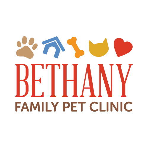 iVET360 Veterinary Logo Design Bethany