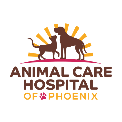 iVET360 Veterinary Logo Design Animal Care