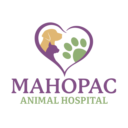 iVET360 Veterinary Logo Design Mahopac