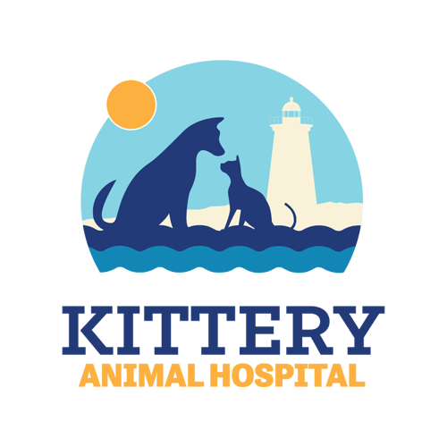 Kttery Animal Hospital Brand Design