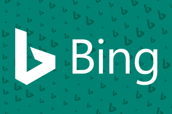 Why Your Animal Hospital Should Be Paying Attention to Bing