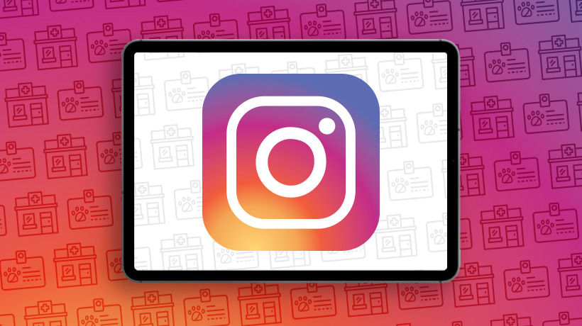 Instagram Local Business Profiles
