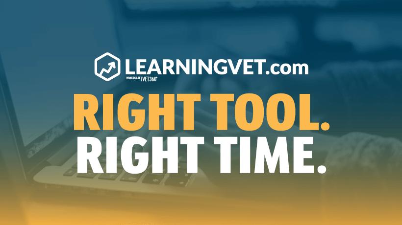 Re-Introducing LearningVet.com
