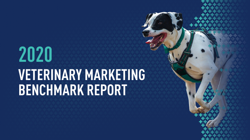 iVET360 releases 2020 Veterinary Marketing Benchmark Report Free to Veterinary Practices